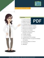 gerencias estrategicas.pdf