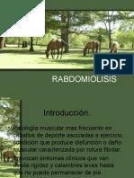 Rabdomiolisis equinos