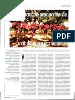 Tecnicas Cultivo uva de mesa.pdf