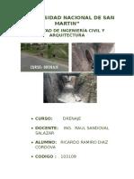Universidad Nacional de San Martin Drenaje