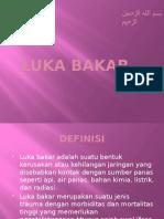 16.Luka Bakar