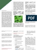 La Planta de Insulina en El Tratamiento de Diabetes Mellitus Tipo II