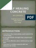 Self Healing Concrete