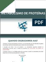Metabolismo de Ptn (1)