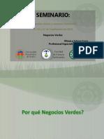 CLASE 06OCT2016 - NEGOCIOS VERDES.pdf