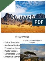SABANA1