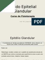 2017- Tecido Epitelial Glandular