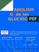 GLUCOLISIS AEROBIA Y ANAEROBIA.pdf