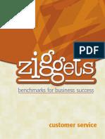 ZiggetCustServ.pdf