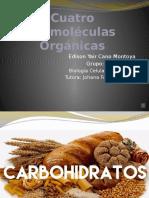 Cuatro Biomoléculas Orgánicas