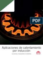 Calentamiento por induccion.pdf