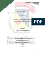 Actividad 2 Equipos y Practica.pdf