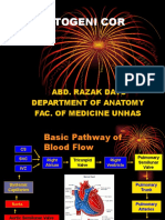 01 Embryology & Normal Structure of Cardiovascular System Dr Abd. Razak Datu