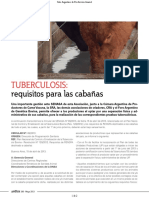 15 Tuberculosis Requisitos