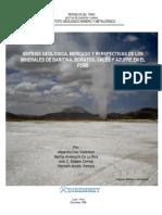 Síntesis Geológica, Mercado y Perspectivas de Los Minerales de Baritina, Boratos, Sales y Azufre en El Perú