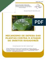 insetos_sugadores