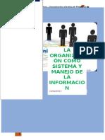 1 Informe de Organizacion y Gestion