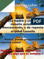 EL CAMELLO SABIO