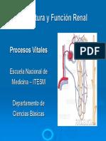 Estructura microscopica y Funcion  glomerual renal 4.3.5 SV (1).pdf