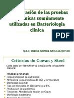 Interpretación de Las Pruebas Bioquímicas