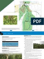 Walk 10 - Loddon - Warren Hills.pdf