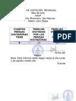 Informe Mesual de Visitacion Formato