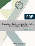 Encuesta Expe Econ05 2013