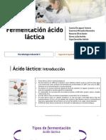 [Slides] - Fermentación ácido láctica.pdf