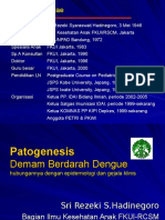 DBD Patogenesis