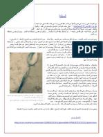 السنبلة .. د هشام يوسف