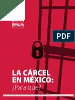 México Evalúa_Cárcel en México