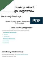 Docslide.pl Budowa i Funkcje Ukladu Nerwowego