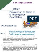 Muestra y Recoleccion de Datos Cuantittivos 2017