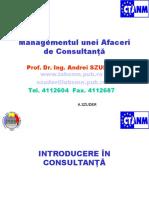 Introducere in Consultanta (1)