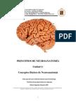 neuroex2