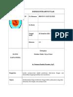8 SOP Injeksi Intramusculaar 008