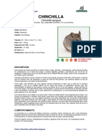 Ficha CHINCHILLA _Chinchilla Lanigera
