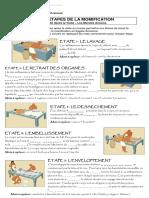 Les étapes de la momification.pdf