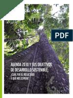Agenda 2030 y Sus Objetivos de Desarrollo Sostenible