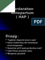 224330911-Hap