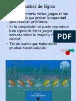 pruebasdelogica.pps