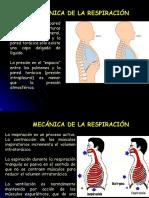 05 Fisiología Respiratoria 02