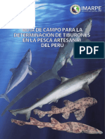 Especies Tiburones Peru