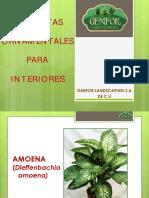 Catálogo Ornamentales Interior