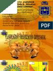 Planificacion y Organizacion Empresarial