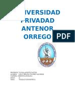 UNIVERSIDAD PRIVADAD ANTENOR ORREG1.docx