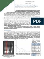 Relatorio Final GM(1).pdf