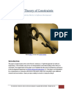 TheoryOfConstraints-ProductivityMetricsInSoftwareDevelopment