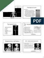 INTRODUCCIÓN  fisiología articular  MMSS .pdf