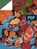 Saturation Measurements.pdf
